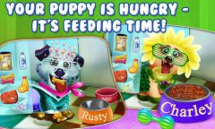 Puppy Dog Dress Up & Care