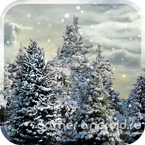 Snowfall Live Wallpaper