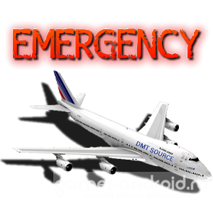 Emergency Landing Disaster