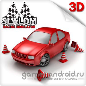 Slalom Racing Simulator