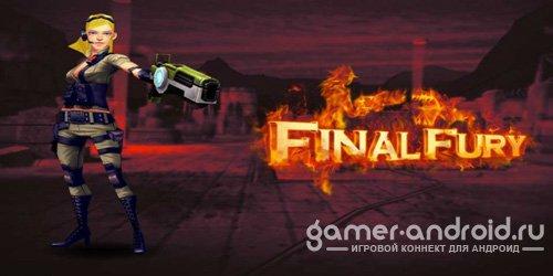 Final Fury