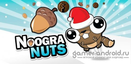 Noogra Nuts Seasons