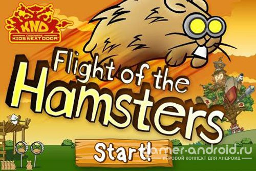 Flight of Hamsters