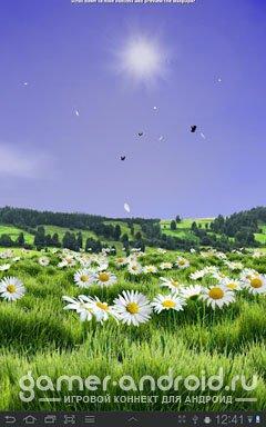 Lovely Daisies Live Wallpaper - Живые обои с Ромашками