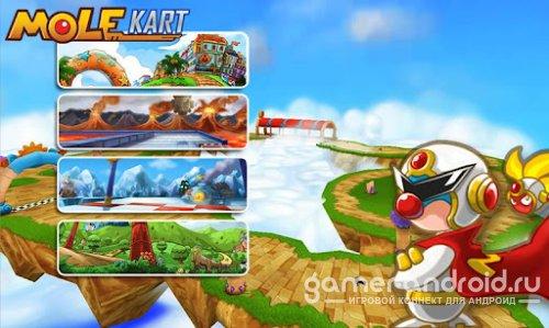 Mole Kart-гонки на картах