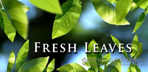Fresh Leaves - Весенние обои