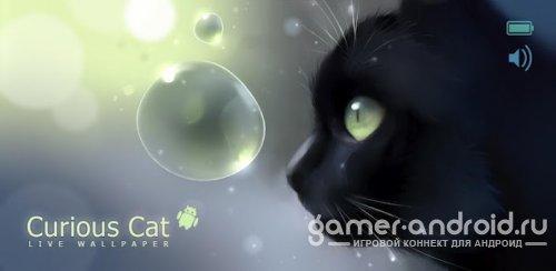 Curious Cat Lite - Обои с черным котом