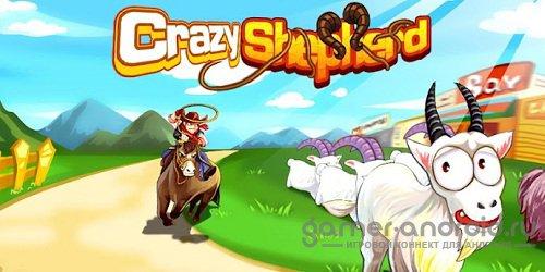 Crazy Shepherd