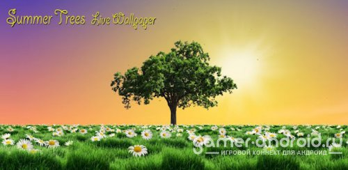 Summer Trees Live Wallpaper