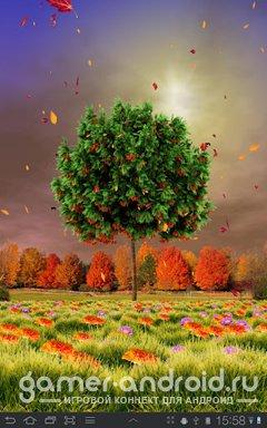Autumn Trees Live Wallpaper