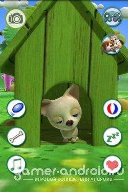 Говорящий Чихуахуа - Talking Chihuahua