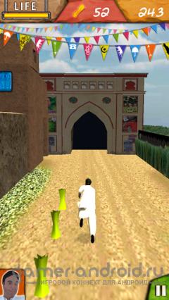 Desi Run 3D