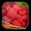 Free Live Wallpaper Raspberry