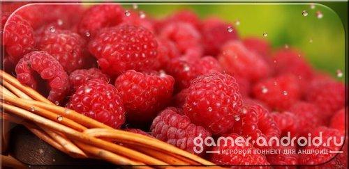 Free Live Wallpaper Raspberry - Сочные обои