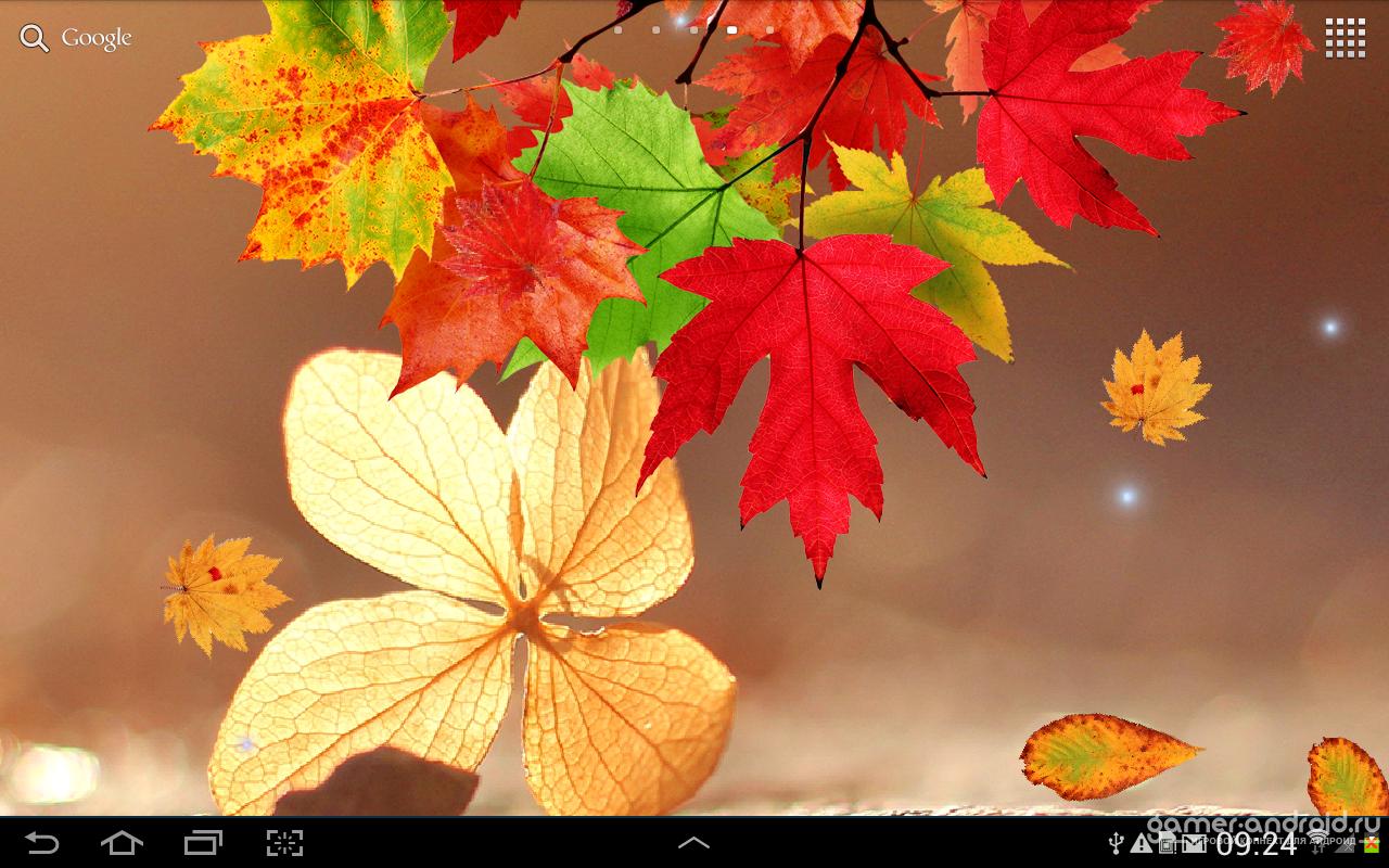 Ира, анимация осень обои на телефон