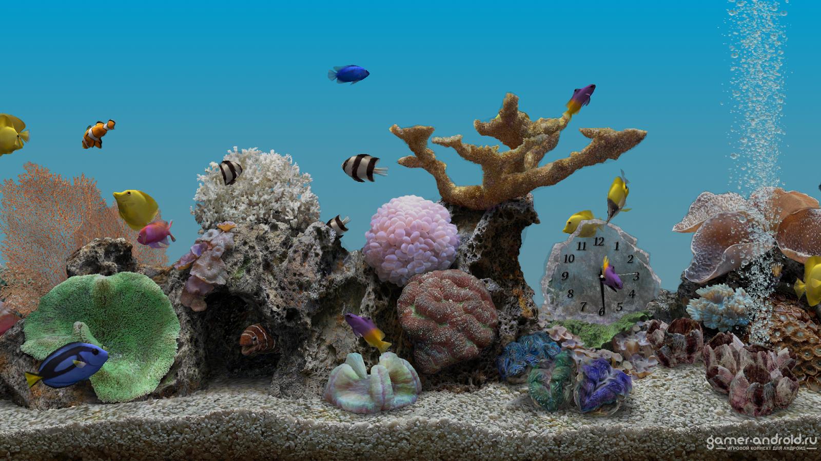 Картинка на рабочий стол аквариум анимация