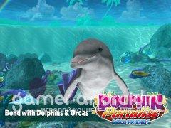 Dolphin Paradise: Wild Friends