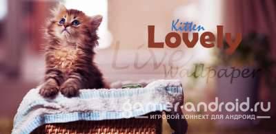 Lovely Kitten Live Wallpaper