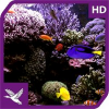 Aquarium Radiance HD