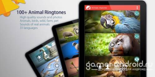 Рингтоны и Мелодии животных для Андроид